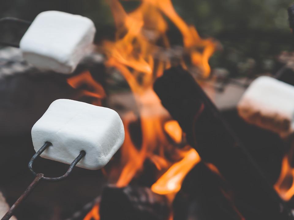 marshmallow-2481460_960_720.jpg