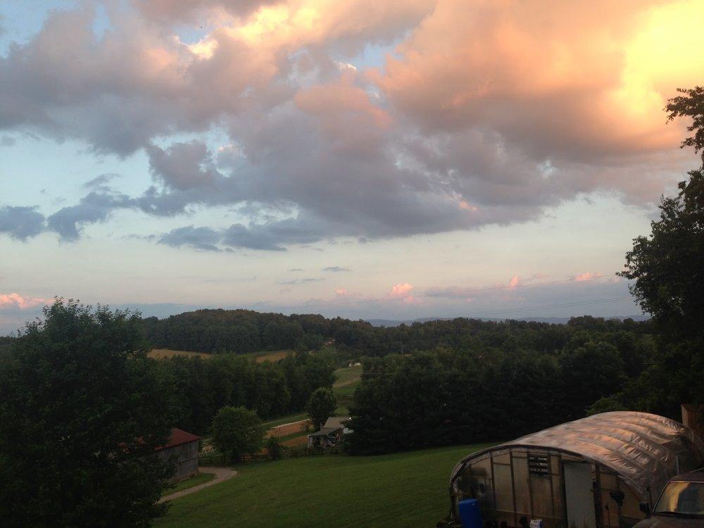 farm1.jpg