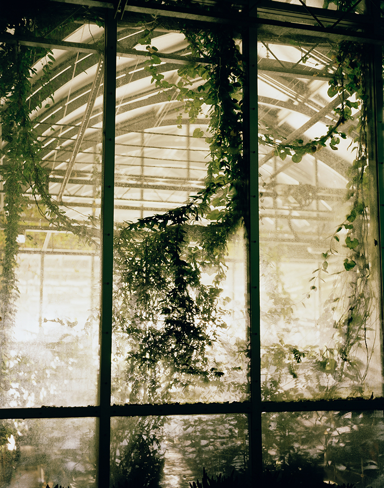 Greenhouse Millenium Seed Bank