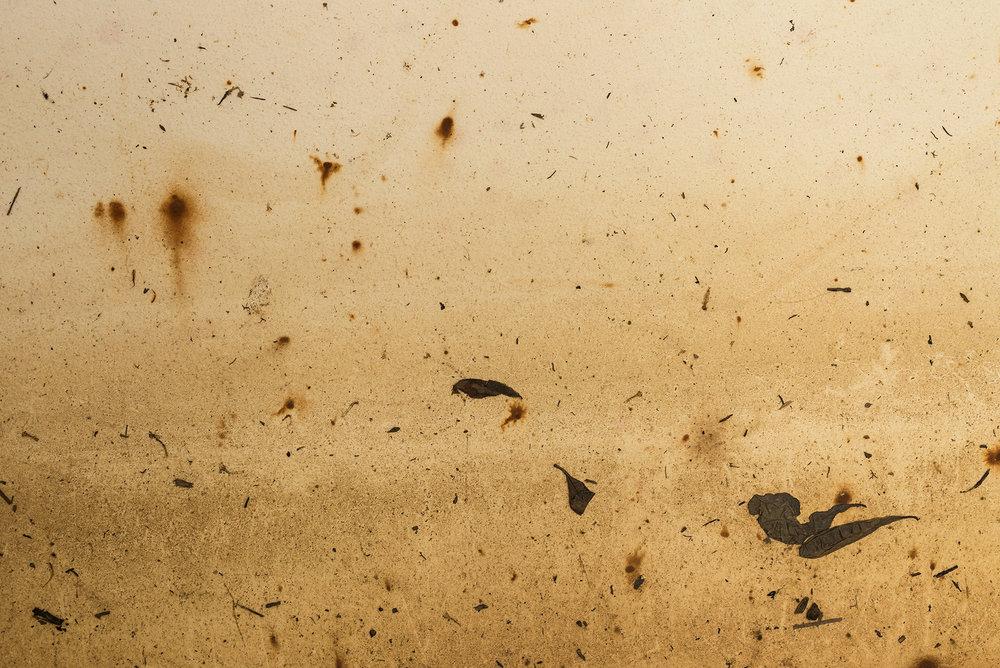 Detail , Hydrograph #7