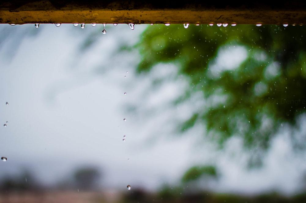 pexels-photo-725876.jpeg