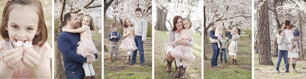 New Jersey Family Photographer, Best NJ Family Photographer, Spring Blossoms Family Photo Session