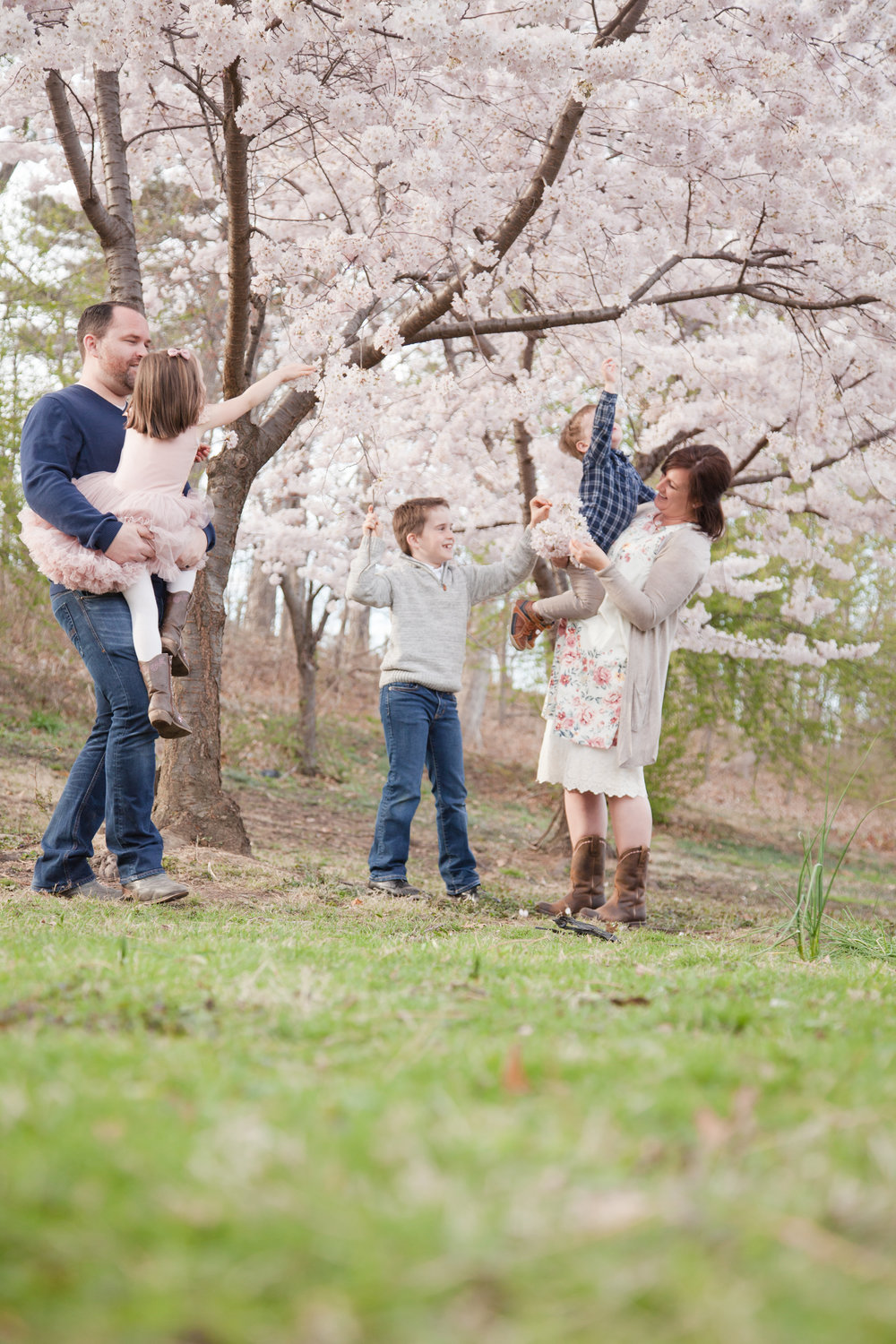 Best Bergen County Photographer, Bergen County Cherry Blossoms Photographer, Spring Blossom Photo Session, Bergen County NJ Photographer