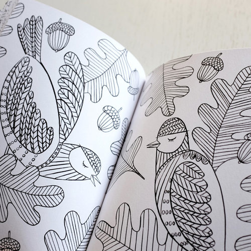 More Mindfulness Colouring Birds Emma Farrarons