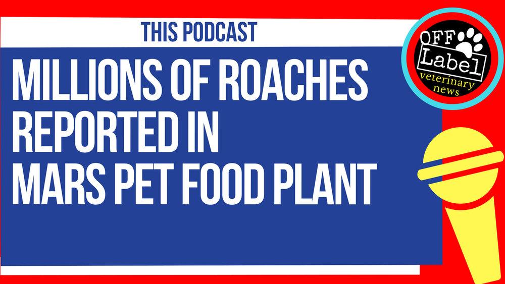 roaches (1).jpg
