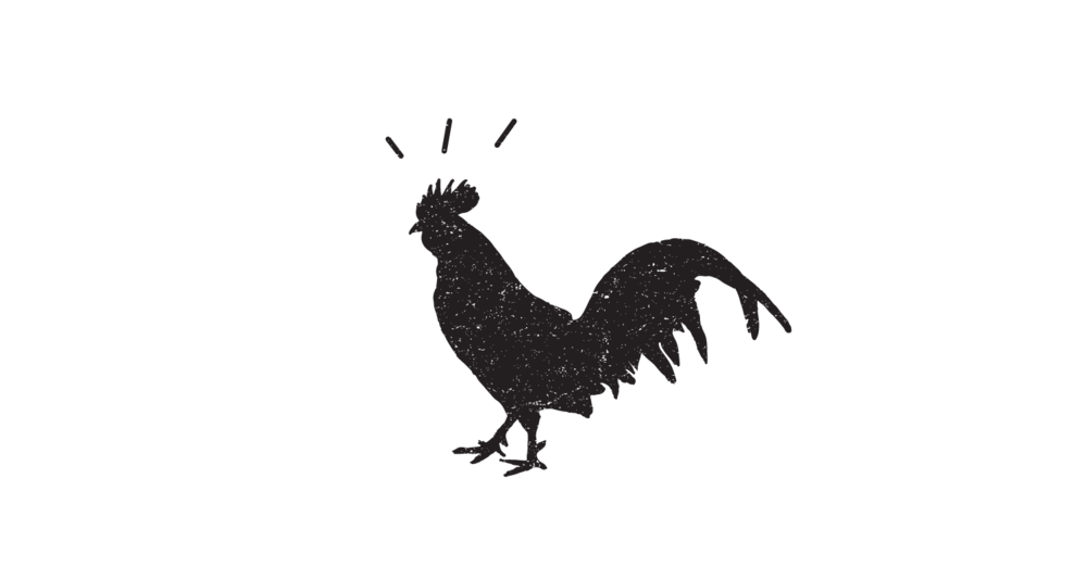 rooster (1).png