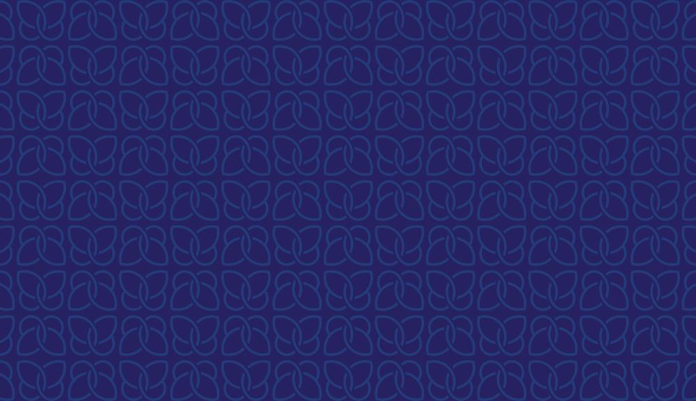 hero_butterfly_pattern.png