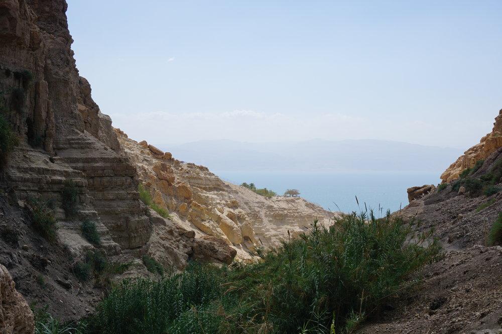 Dead Sea from En-Gedi Israel.JPG