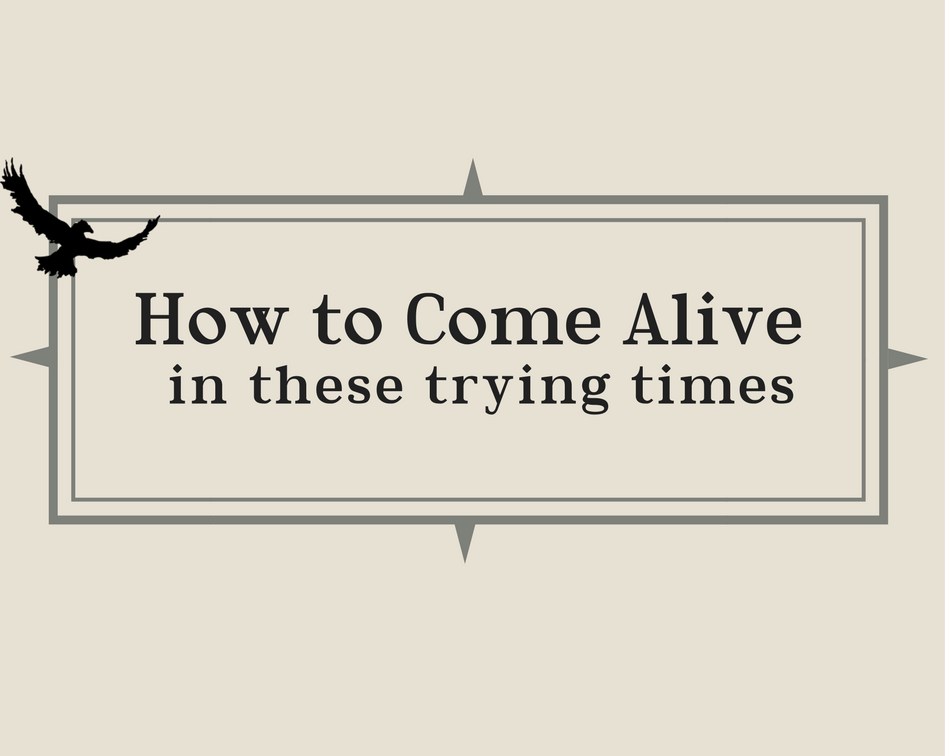Come ALive (2).png