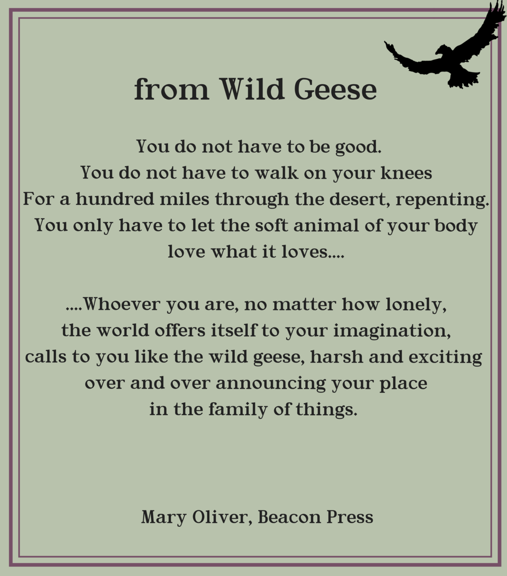 Wild Geese (1).png