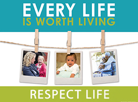 respect-life-2015-montage.jpg