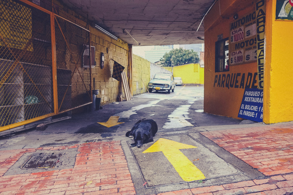 Colombia_TEST_gallery-25.jpg