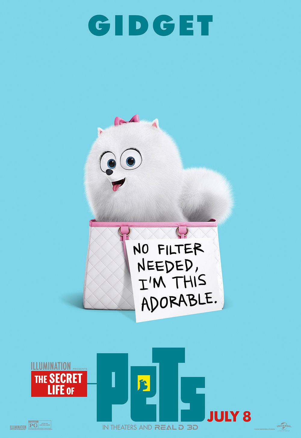 Pets_Wildpost_Gidget_100dpi.jpg