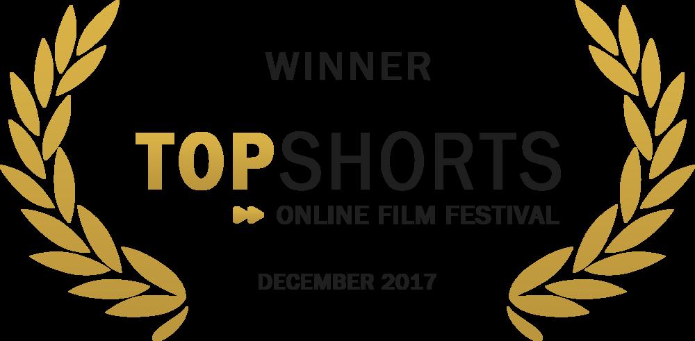 Top Shorts Winner - 2017 12.png