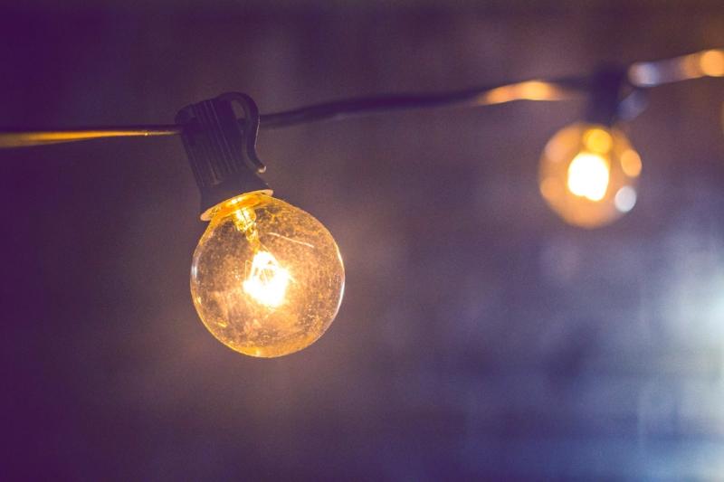 Bulb 1.jpg