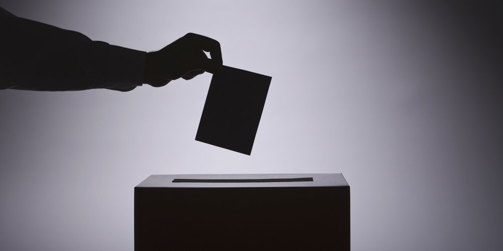 12 Reasons I Voted Democratic by James W. Anderson
