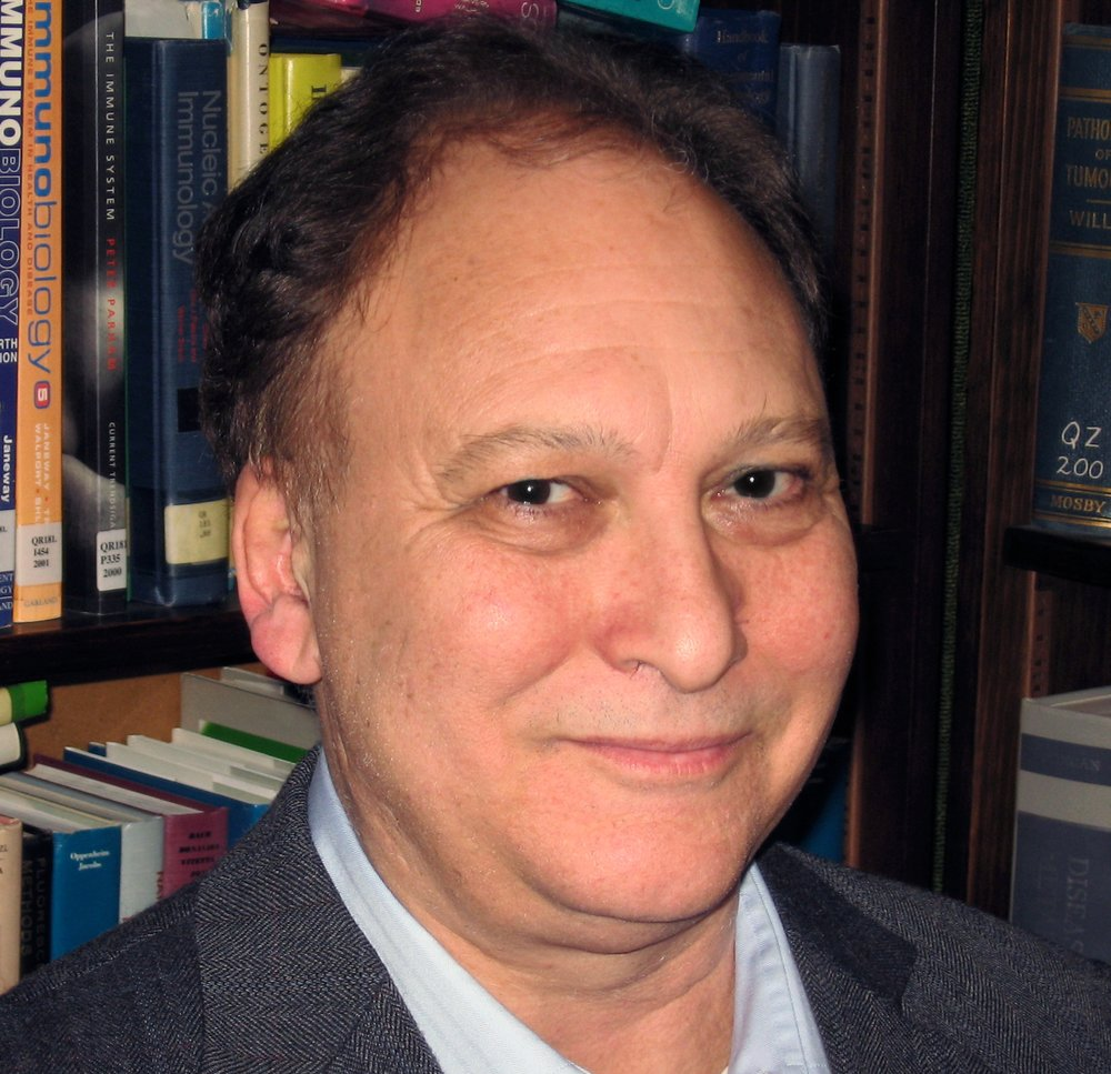 Mark Marchionni, Ph.D.  Strategic Development Leader  mark.marchionni@verizon.net