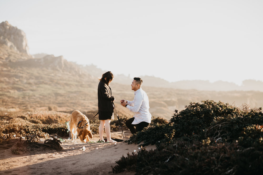 Big Sur proposal california coast photographer