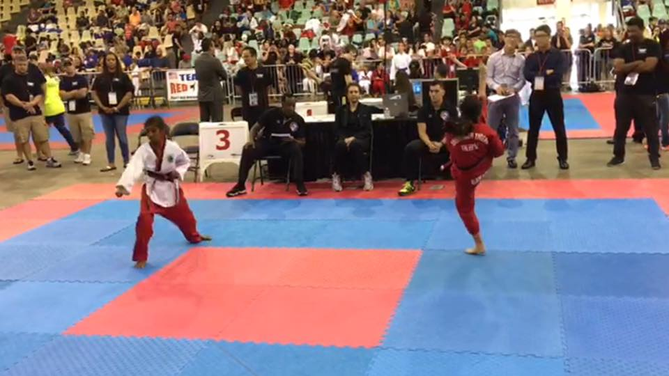 Martial Arts Poomsae Competition