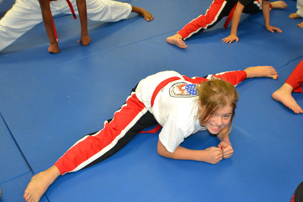 FAMILY TAEKWONDO CLASSES -