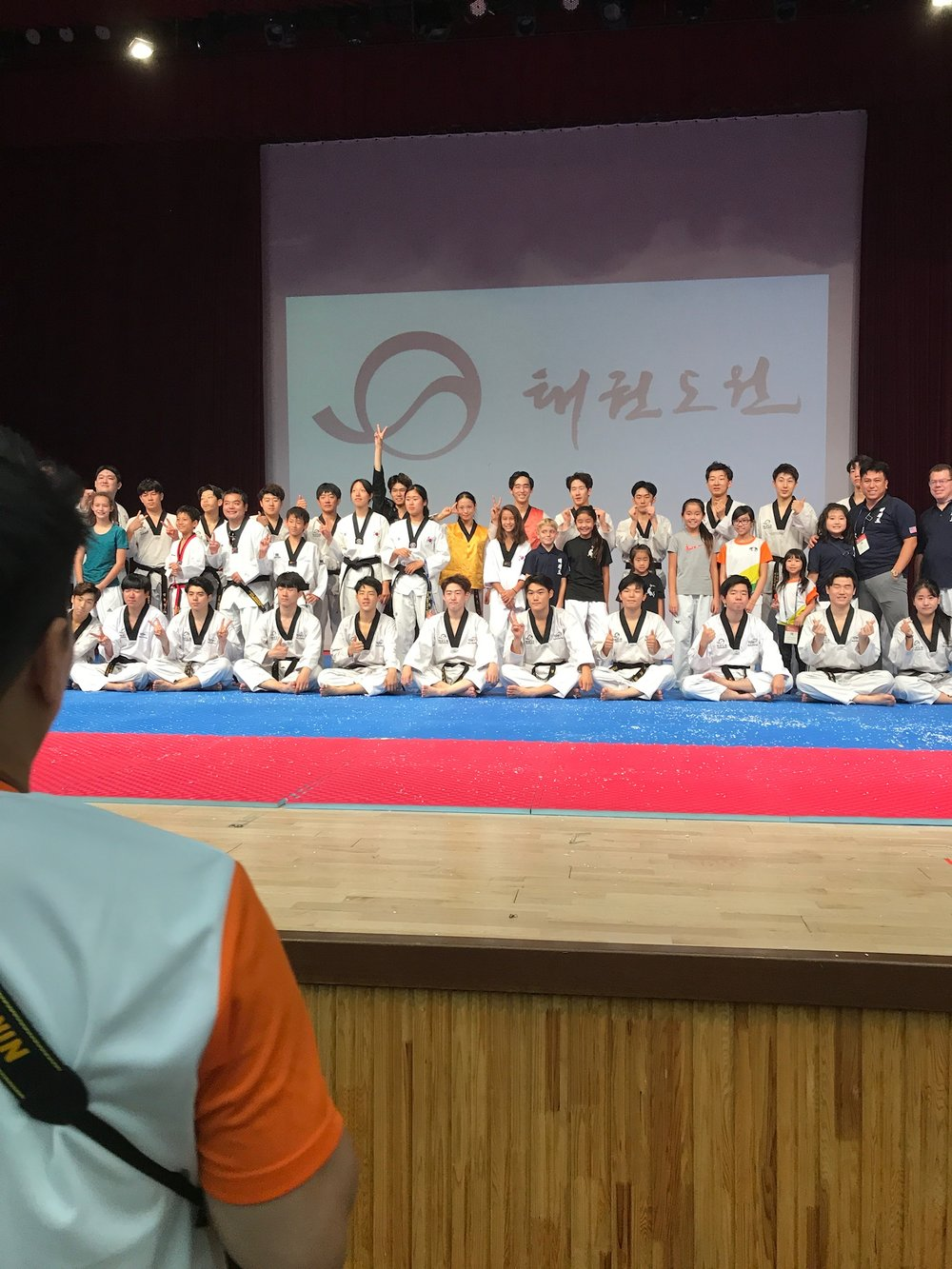 Taekwondo Culture Expo Korea 2017