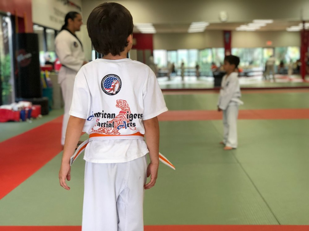 Kids Martial Arts Classes Broward