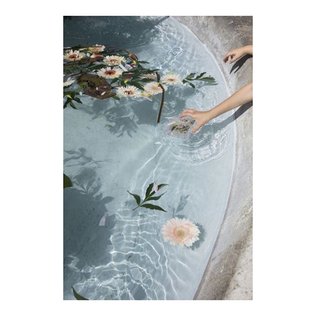 Sundays are for baths, hairemonies, and taking some time to rest and recharge.🤗⁣ Wishing you a peace-filled Self-Care Sunday!💕⁣ ⁣ Inspo: Found Photography ⁣ ,⁣ ,⁣ ,⁣ ,⁣ ,⁣ ,⁣ ,⁣ .⁣ .⁣ .⁣ #greenbeauty #nochemicals #naturalhairproducts #ecofriendlyproducts #nontoxicliving #naturalbeautyproducts #sustainablebeauty #haircaretips #hairrepair #greenbeautyproducts #haircareroutine #organicsalon #healthyscalp #consciousbeauty #hairgrowthoil #hairoils #lowimpactlifestyle #crueltyfreehair #earthconscious #naturalhairproduct #overprocessed #hairstylingproducts #sustainablehaircare #hairritual #latierrasagrada #hairemony #hairritual⁣