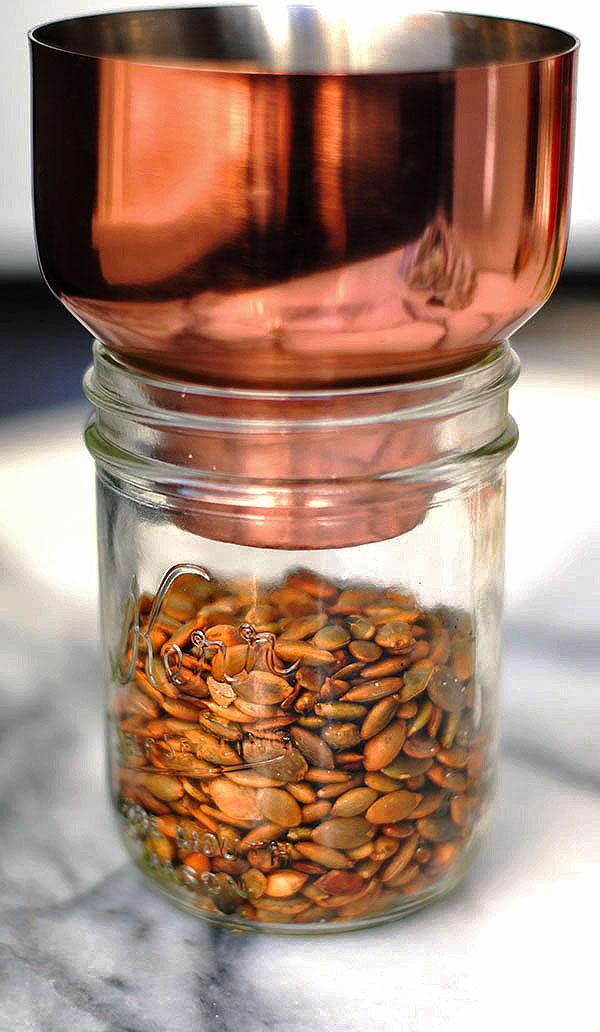 toasted pumpkin seeds | shemadeitshemight.com