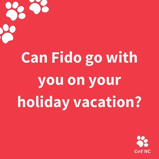 I wish I could take my dogs with me EVERYWHERE. But I understand that's not realistic (and they aren't small enough to sneak in anywhere! 🤣😳🙈) If you are in need of dog walking, cat care, or dog sitting for your upcoming business trip, weekend getaway, or holiday vacation, we've got you covered! Holidays do tend to book up quickly, so don't delay, and schedule your meet and greet with us today at the link in bio. ✨#caninesfelinesnc