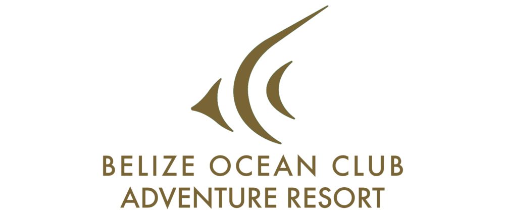 BOC adventure RESORT logo.png