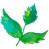 floral element 12.jpg