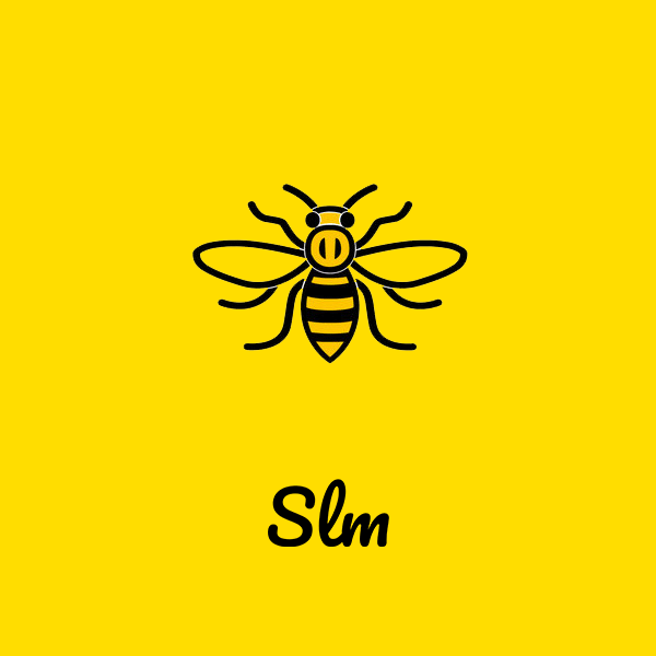 Manchester Bee | Straight Line Marketing | B2B Telemarketing