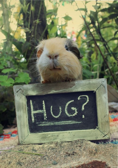 hug-1.jpg