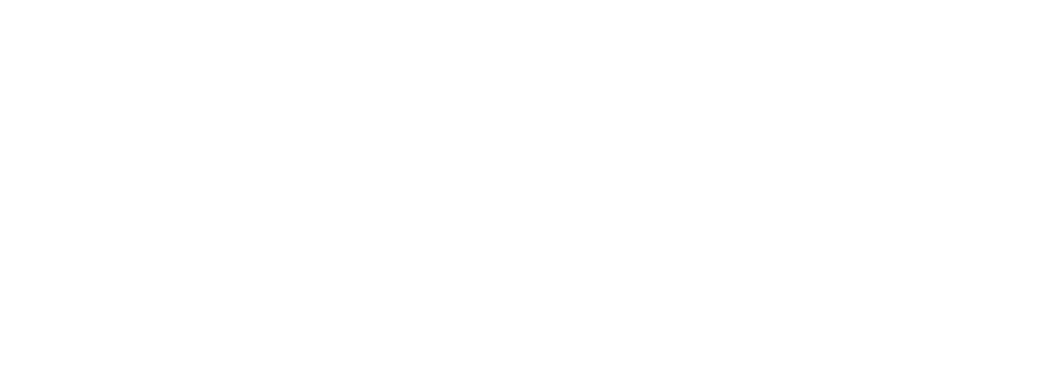 The NZ Film Connection