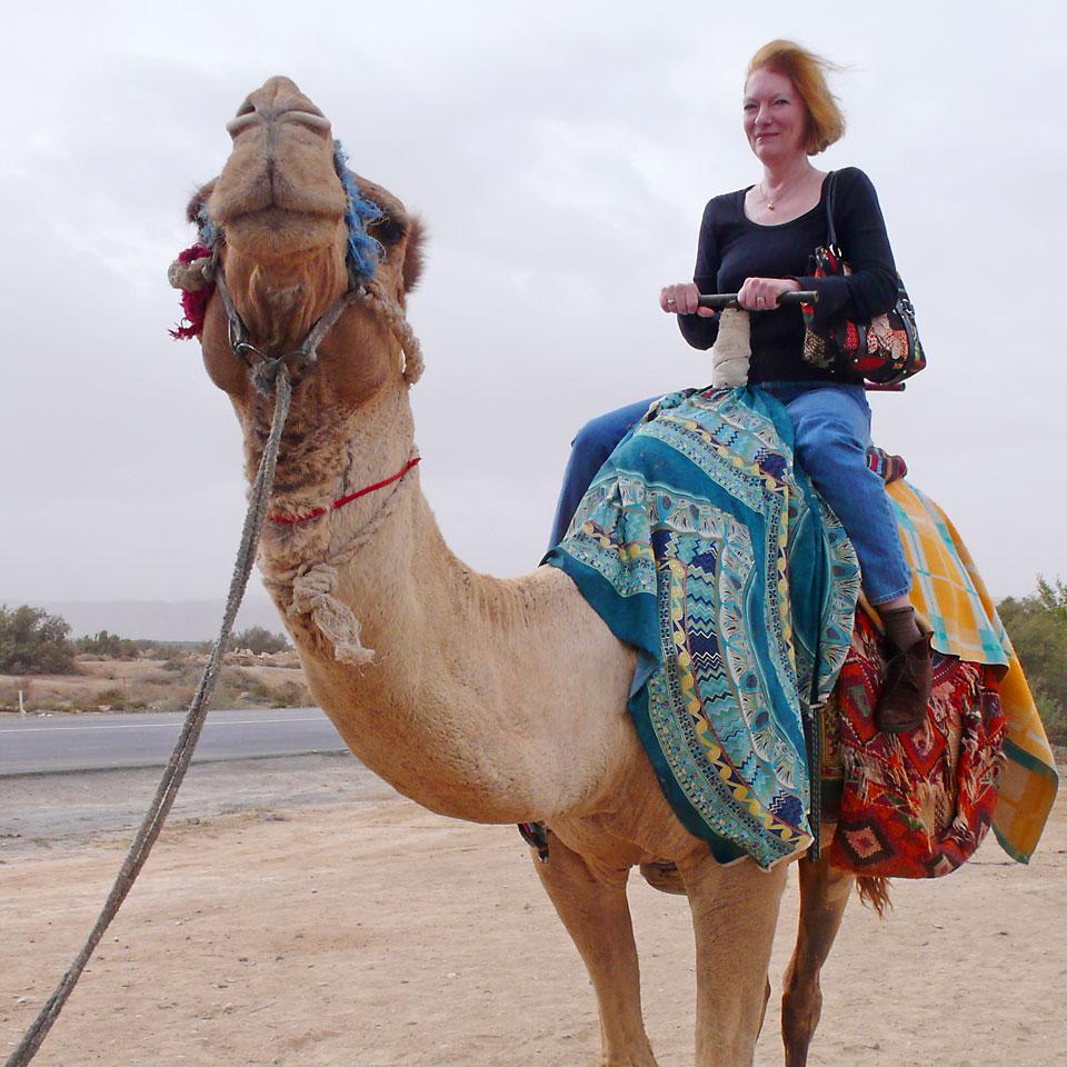 p-camel.jpg