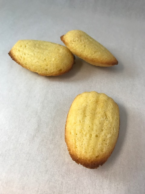 Madeleinescookies.jpeg