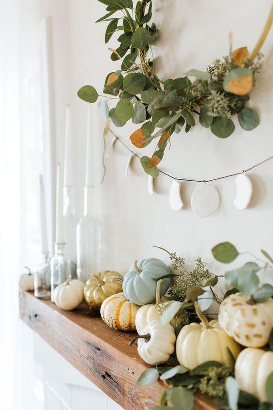Calabazas pintadas combinadas con plantas