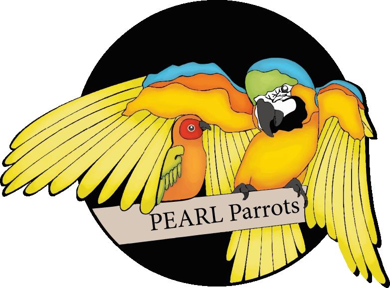 pearl-parrots.png