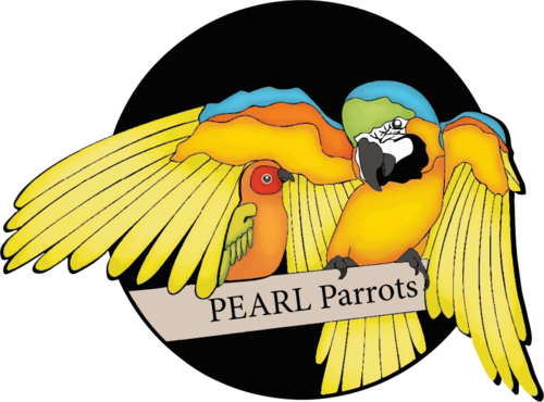 pearl-parrot-rescue.png