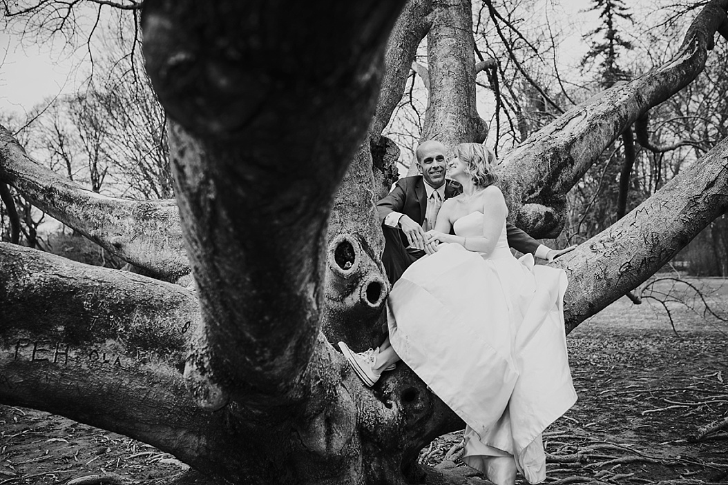 black and white of bride and groom sitting in tree