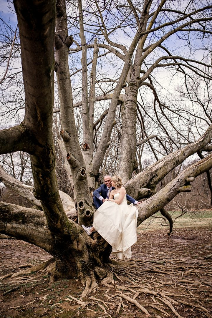 vertical shot of bride and groom in tree
