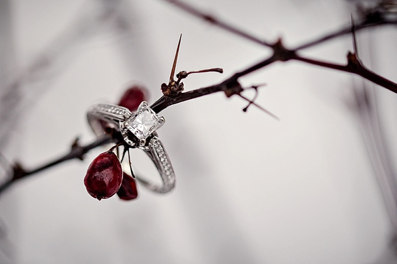 engagement ring shot in winter berries
