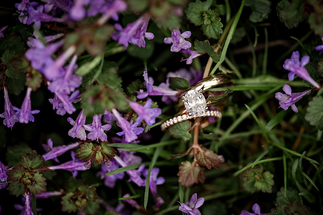 wedding bands in purple flowers