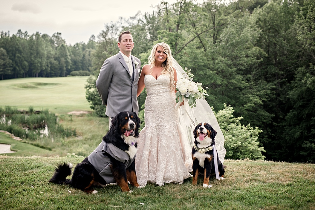bride and groom formal picture with dogs