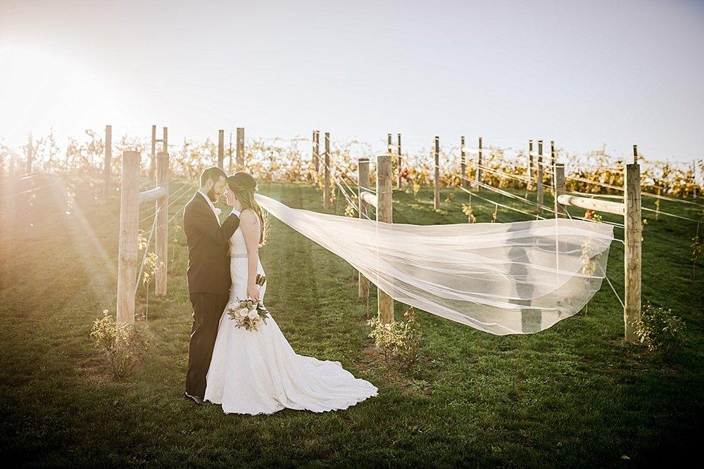 Folino-Estates-Winery-Wedding-Photographer_0020.jpg