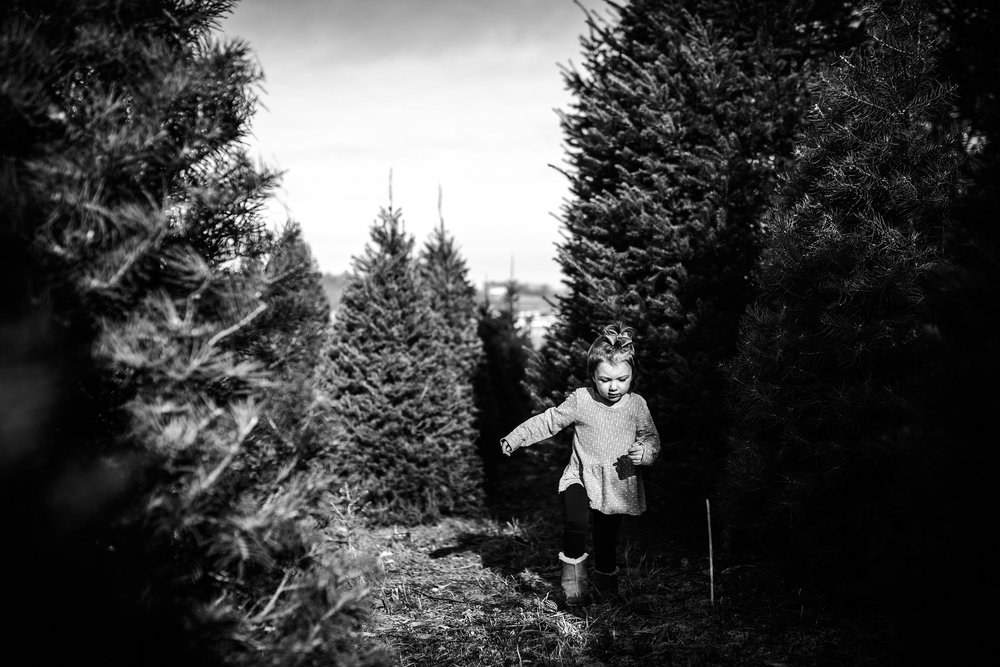 Lehigh-Valley-Documentary-Family-Photographer_0049.jpg