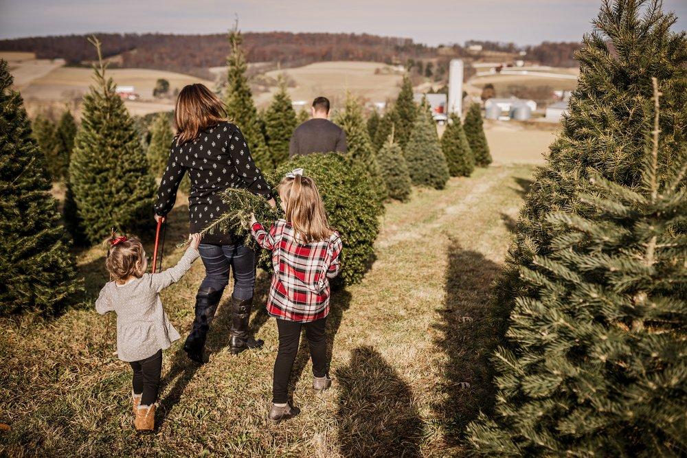 Lehigh-Valley-Documentary-Family-Photographer_0063.jpg