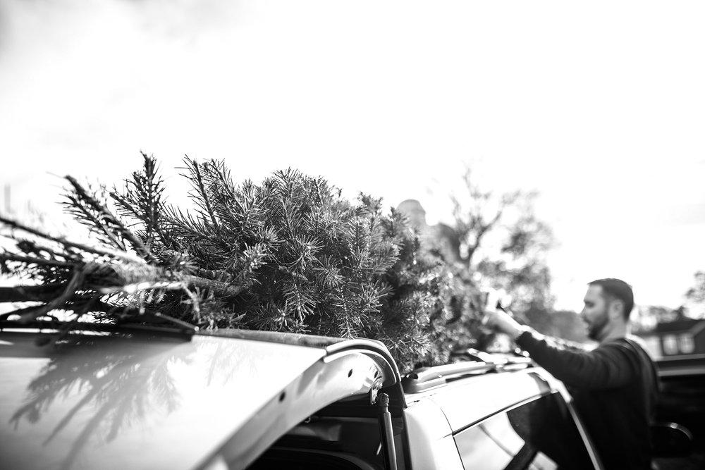 Lehigh-Valley-Documentary-Family-Photographer_0089.jpg