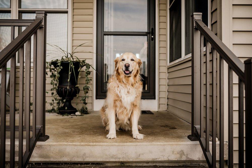 Lehigh-Valley-Documentary-Family-Photographer_0113.jpg