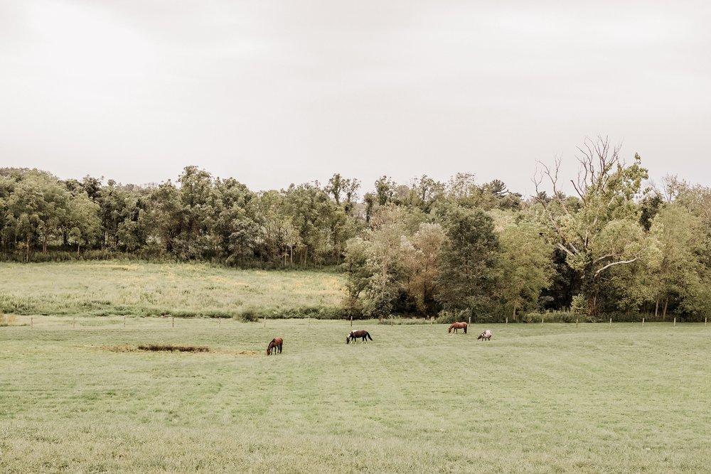 Durham-Hill-Farm-Wedding-Photographer_0073.jpg